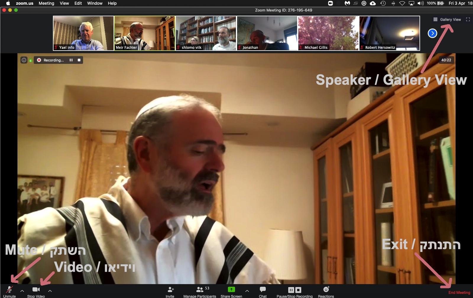 Zoom-speaker-view-2